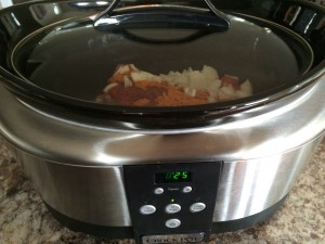 Mexican is great in the crockpot! Make enchilada, taco, empanada, and burrito filling!