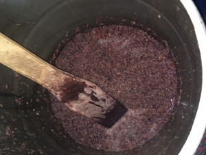 De-stemmed and crushed grapes are left in barrels for one week, stirring daily.